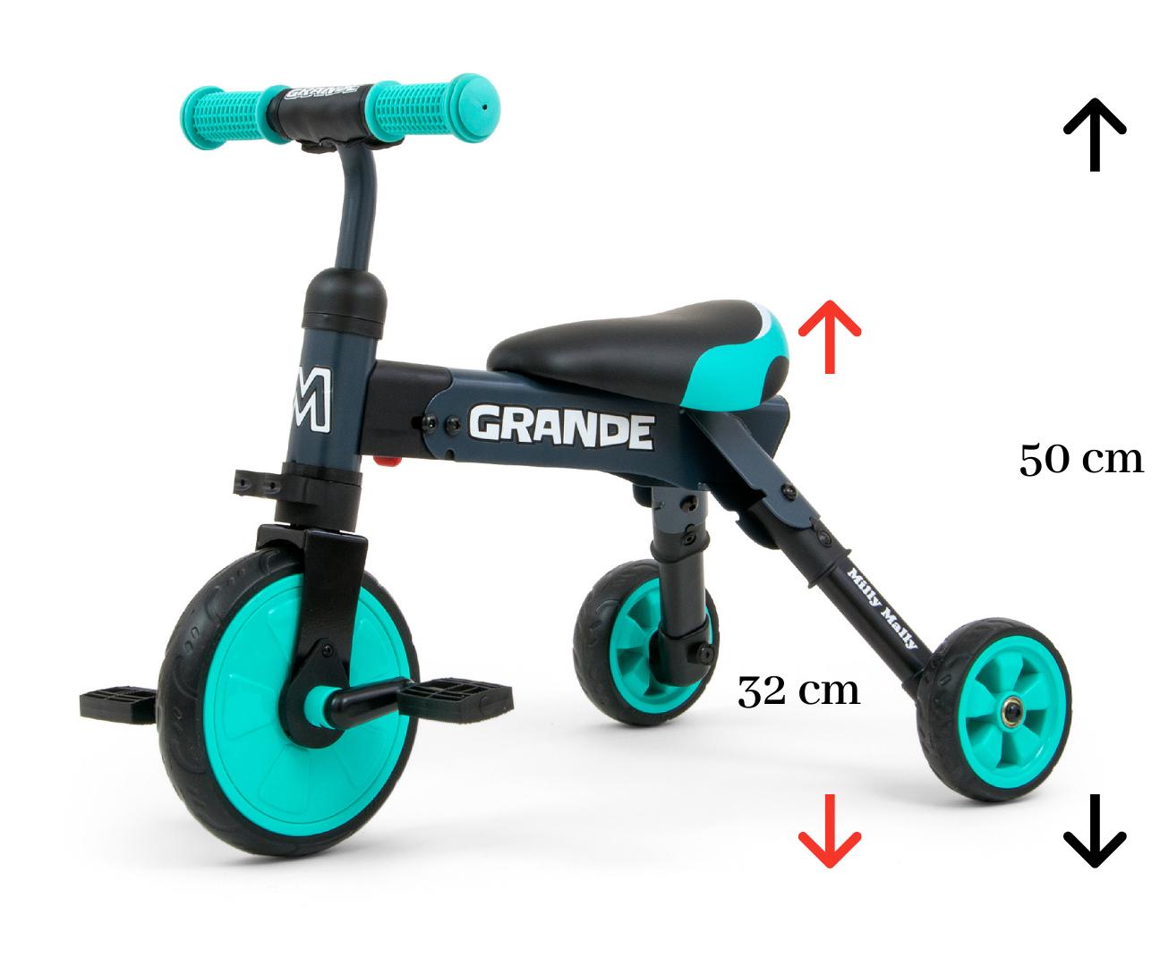 Milly Mally pealeistutav sõiduk – Bike kaks ühes GRANDE Mint